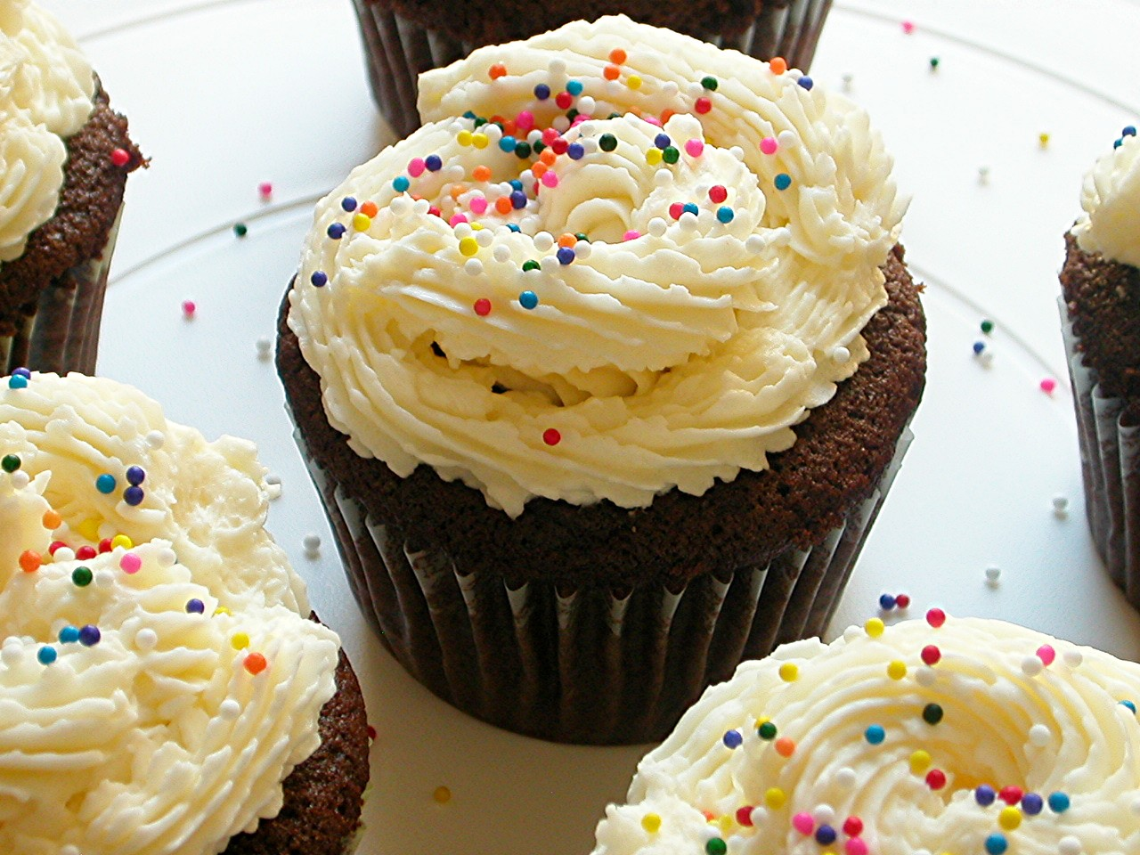 chocolate cupcakes and vanilla frosting