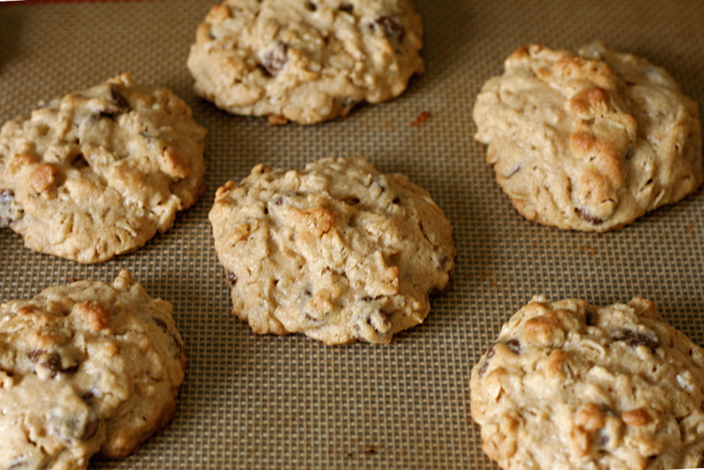 chunky peanut butter and oatmeal chocolate chipsters